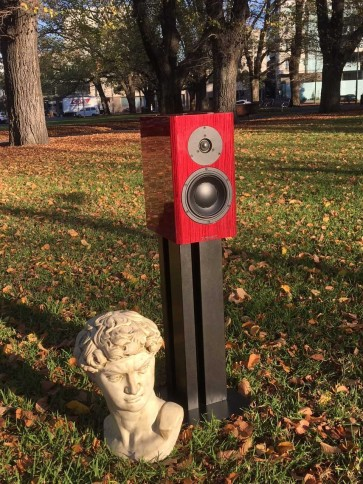 Dynaudio Special Forty sunrise in the park