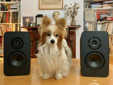 The Rega Kyte loudspeaker...Heretic purist transducer
