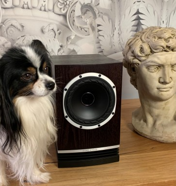 Fyne Audio F500 loudspeakers ... dual concentric with detail and focus