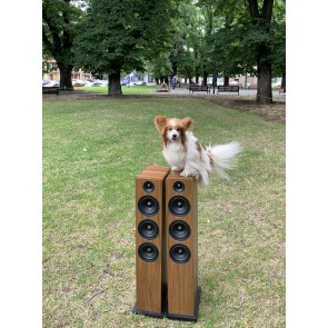 Acoustic Energy AE120 3 Way Floorstanding Speakers