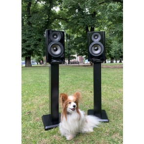 Acoustic Energy AE 500 Standmount Speaker ... pure carbon ...