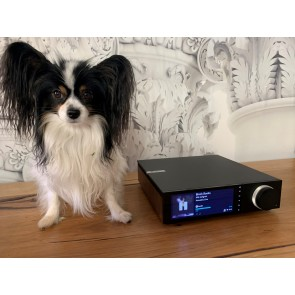 Cambridge Audio Evo 75 one box high fidelity streamer amplifier with style