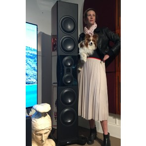 Monitor Audio Platinum PL500II loudspeakers