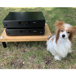 Matching amp cd player and Papillon
