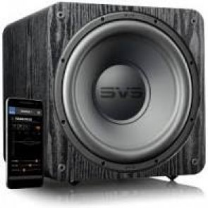 SVS SB-1000 Pro - Sealed Box Home Subwoofer (Black Ash)